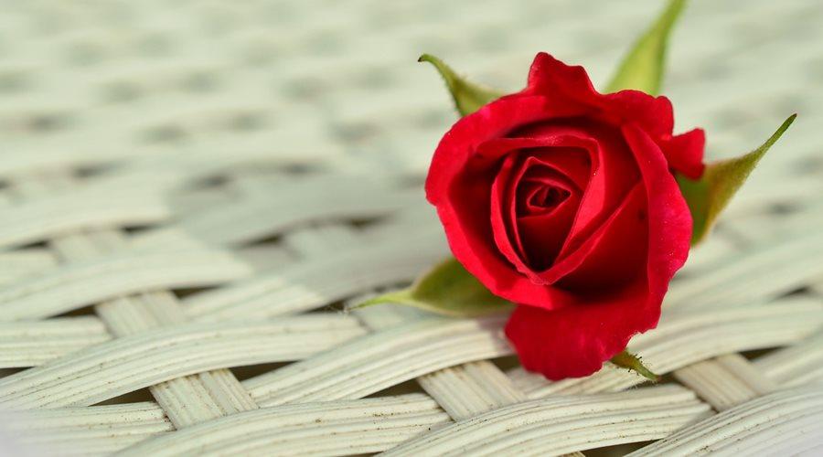 Nem minden kapcsolatból lesz nagy szerelem, de attól még szeretettel gondolok rád.