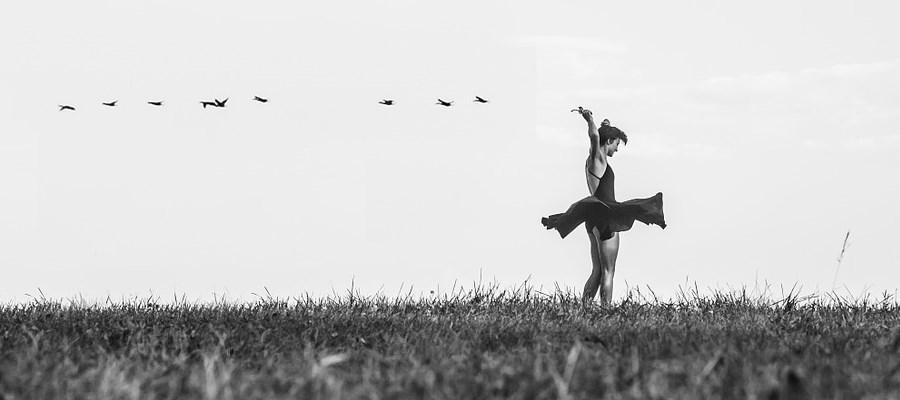 Kacifántos út a balett teremig