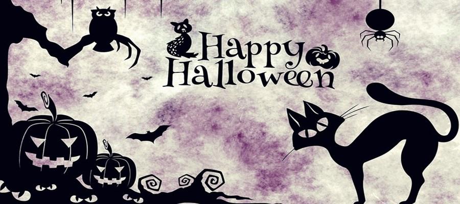 Tegyünk rendet Halottak napja és Halloween környékén